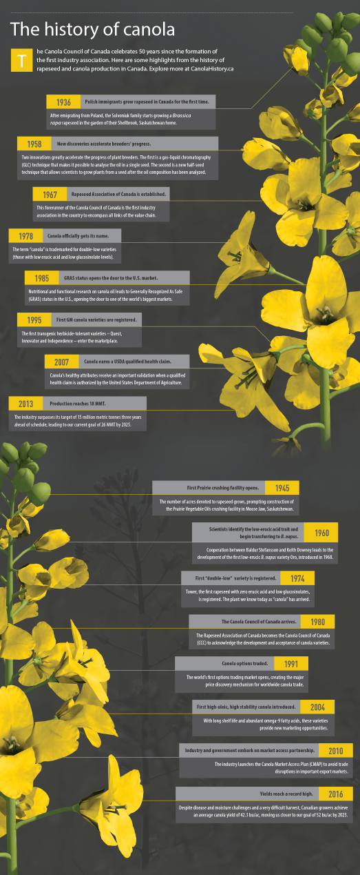 Infographic: The History Of Canola