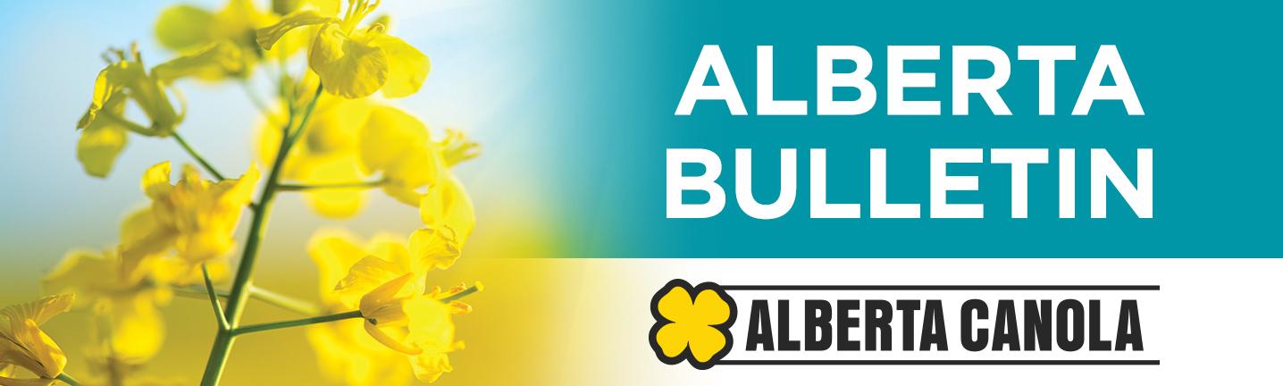 Alberta Bulletin