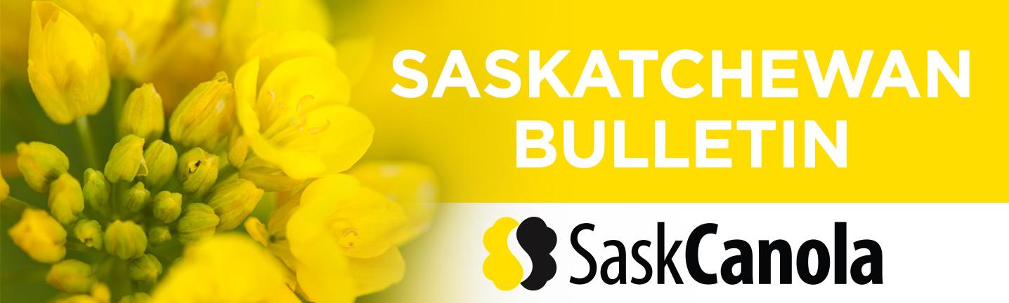 Saskatchewan Bulletin