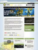 Screenshot of the Canola Research Hub webpage