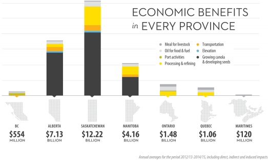 While the greatest economic benefit is in the Prairies, canola also has a significant impact on the economies of Ontario, Quebec, British Columbia and the Maritime provinces.
