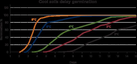 Cool soils delay germination
