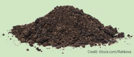 A pile of soil