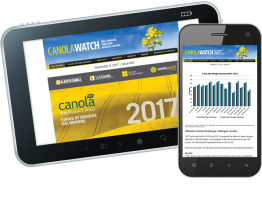 Canola Watch Tips