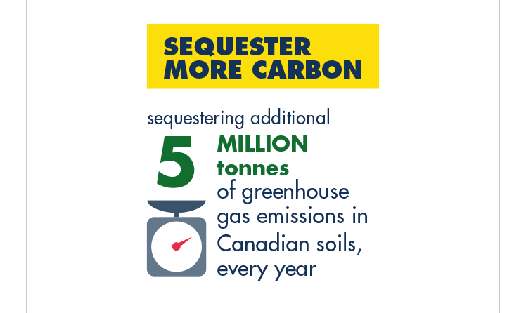 Sequester more carbon: Sequestering additional 5 million tonnes