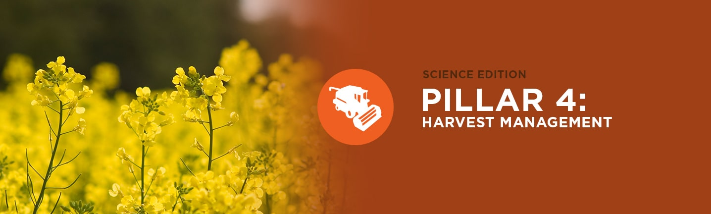 Pillar 4: Harvest Management