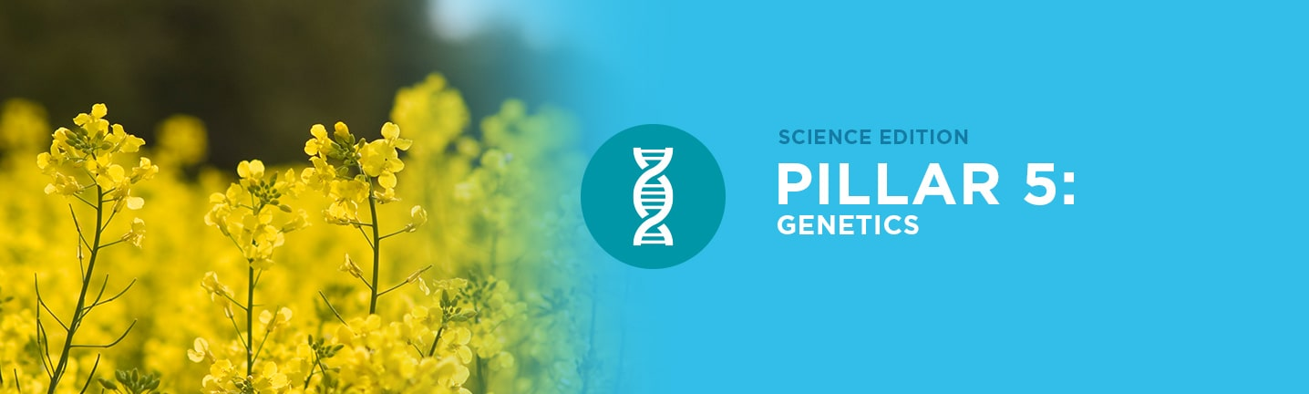 Pillar 5: Genetics