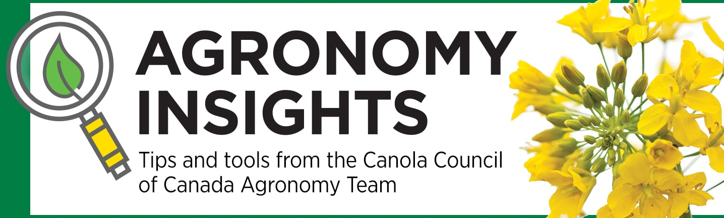 Agronomy Insights - Tips and tools from the Canola Council of Canada agronomy team