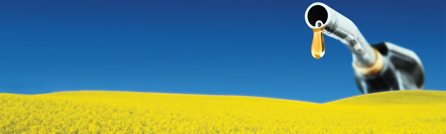 Canola field with a large fuel pump coming out of the horizon