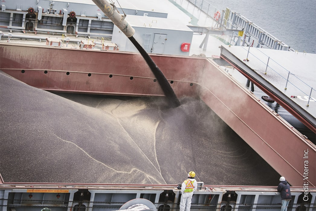 Loading a vessel with canola seed