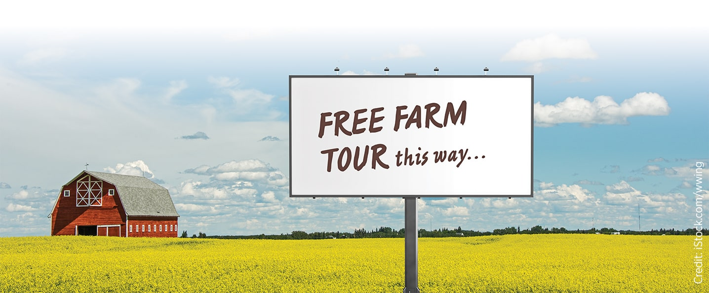 Canola field with a sign 'Free farm tour this way...'