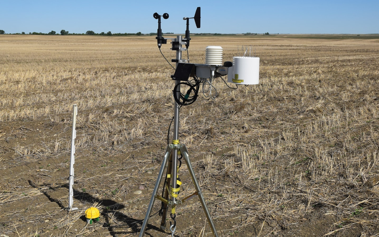 Crop Intelligence Moisture Probe in field