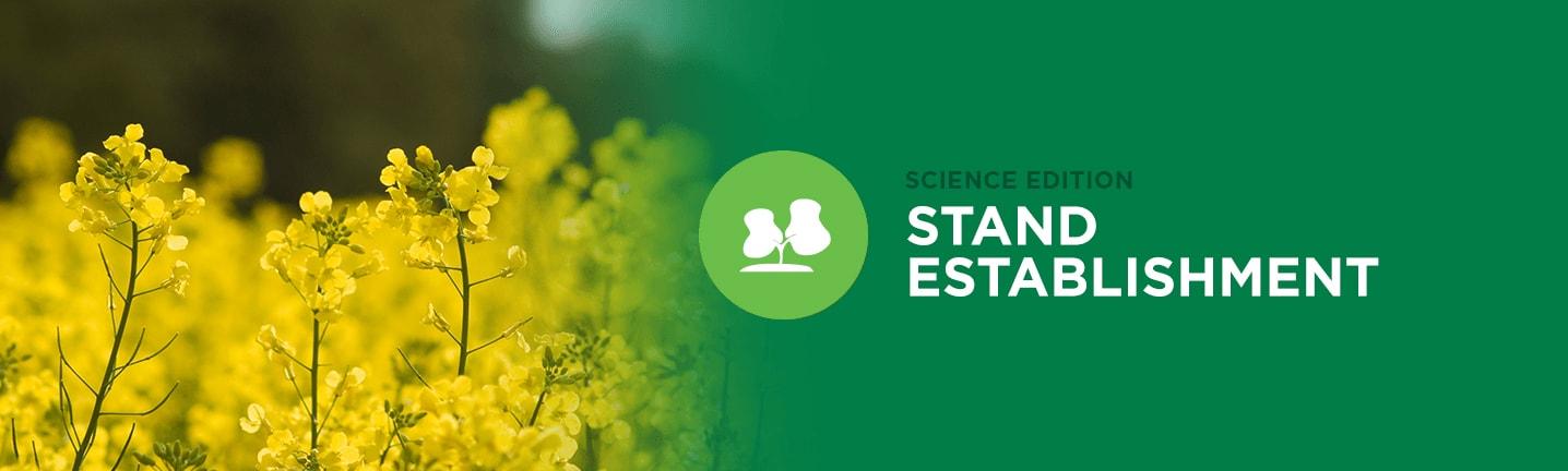 Science Edition: Stand Establishment